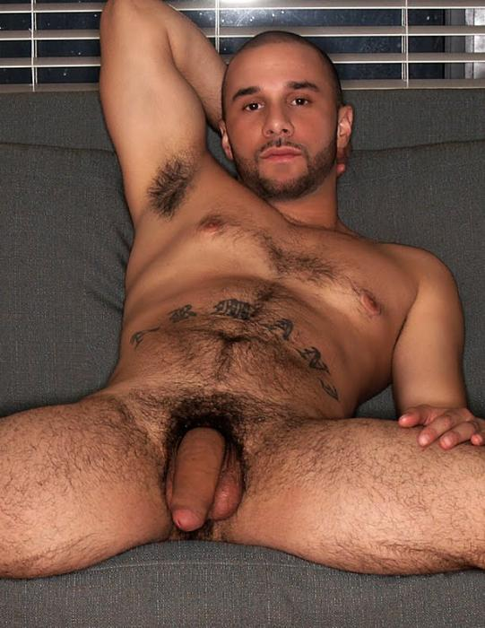 Hairy body sex