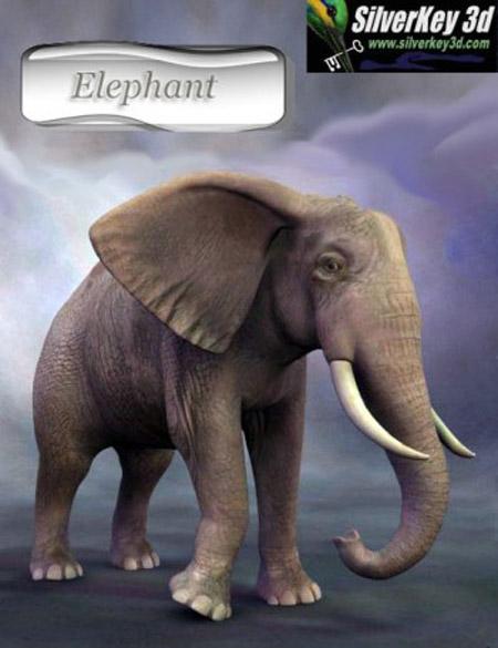 African Elephant - Howdah Set
