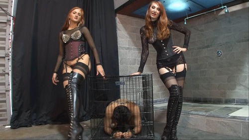 Instruct And Humiliate Female Domination