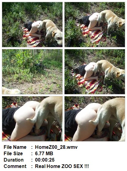 Download This Video From Home Zoo Folder.