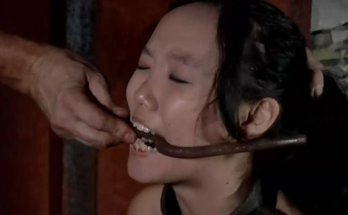 love bdsm seoul