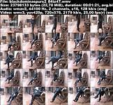 blackdominaspurs2_84tz47_0.jpg