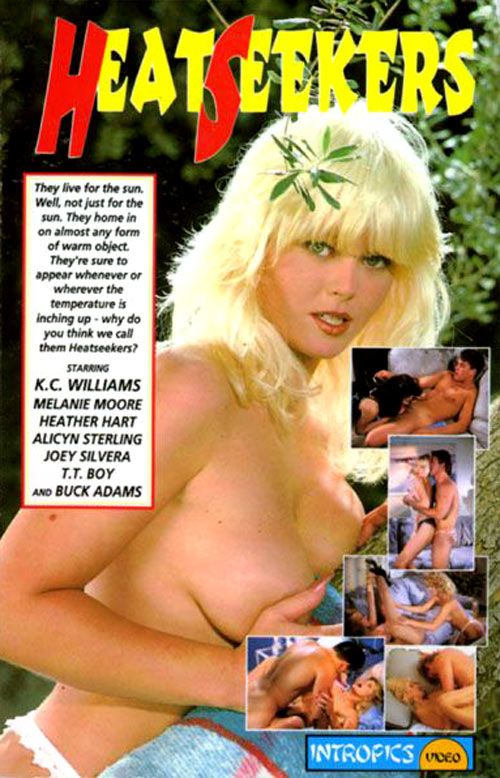 Nina hartley amp don fernando sensual seduction scene 1 - 2 7