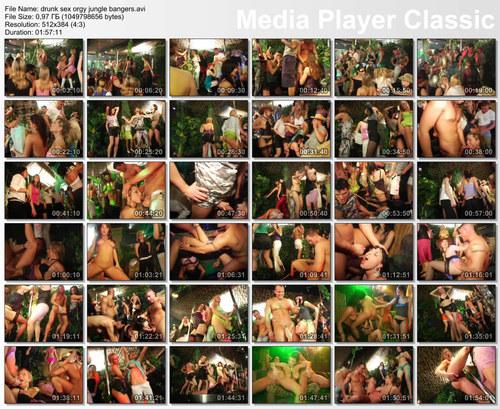 Drunk sex orgy - jungle bangers